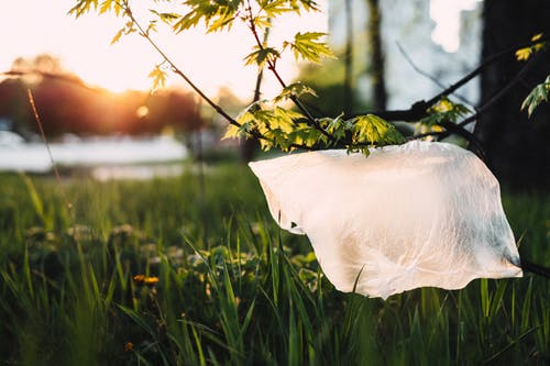 Biodegradable Plastic Bags: A Sustainable Future