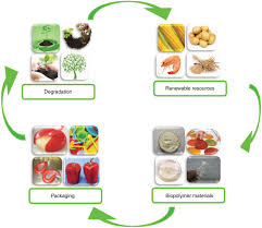 biopolymers packaging materials